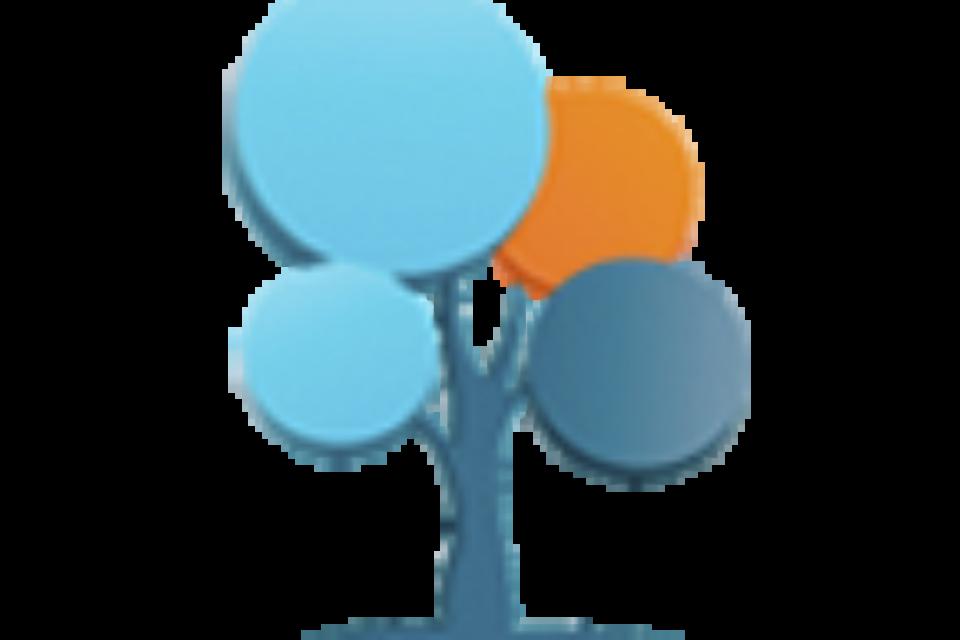 Consultoría gerencial y soluciones